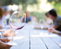 Wine industry employed 1.7 million people last year